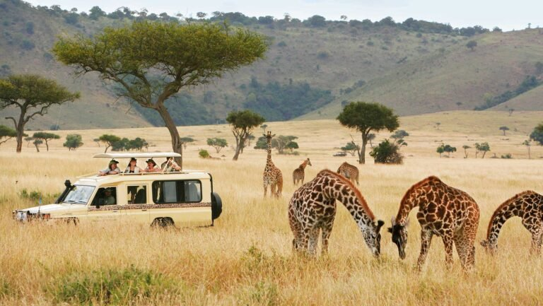 Tanzania Will Host Major East African Regional Tourism Expo in October
