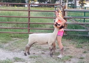 5 Cattle… 4 Sheep – 4-H Livestock - Meetings Northwest, Inc