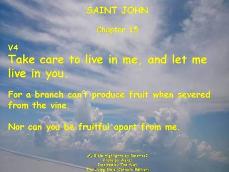 saint john chap 15