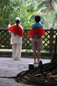 Ladies practicing Tai Chi