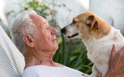 Activities for Your Loved One With Dementia