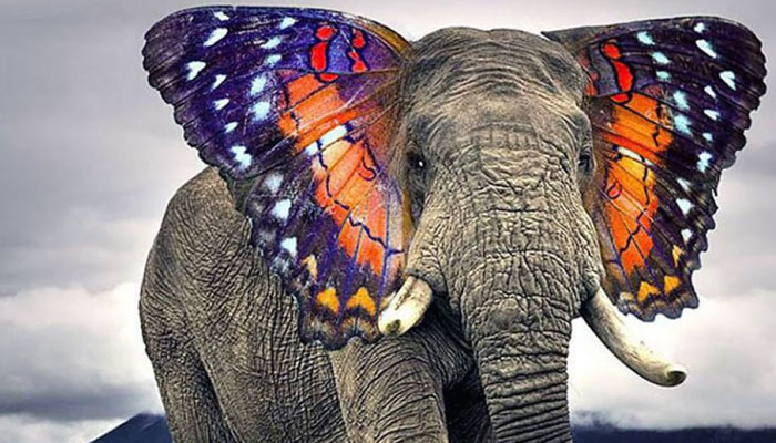 Is hybrid IT the elephant in the room?