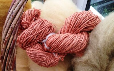 More Natural Dyeing at Meet the Wool
