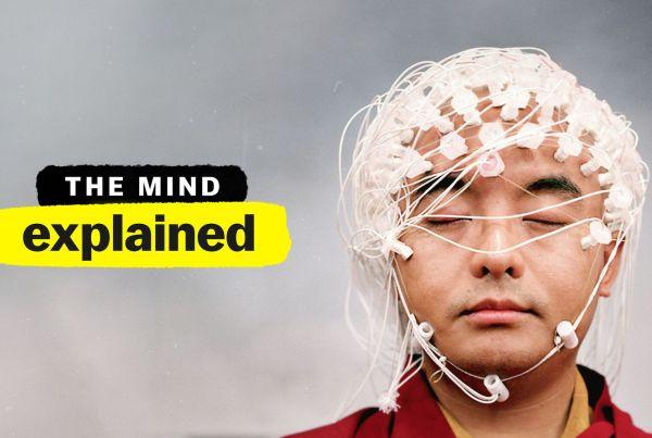 ciencia cerebro mente memoria psicodelicos sonhos meditacao explicando a mente