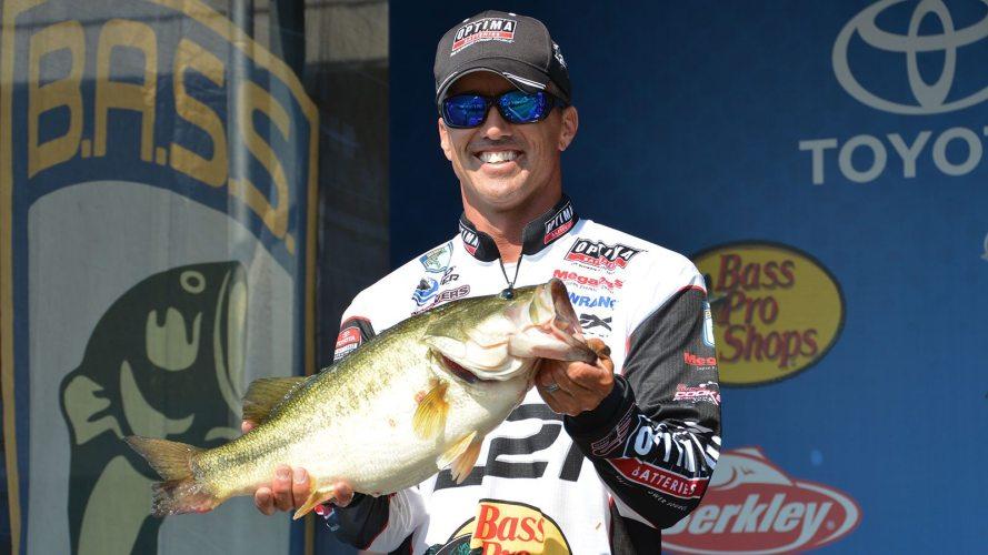 kentucky-lake-2015-spark-shad-fish