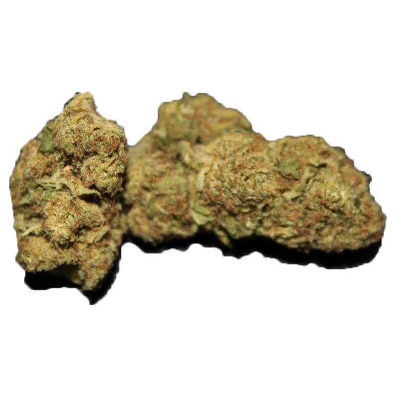 blueberry strain