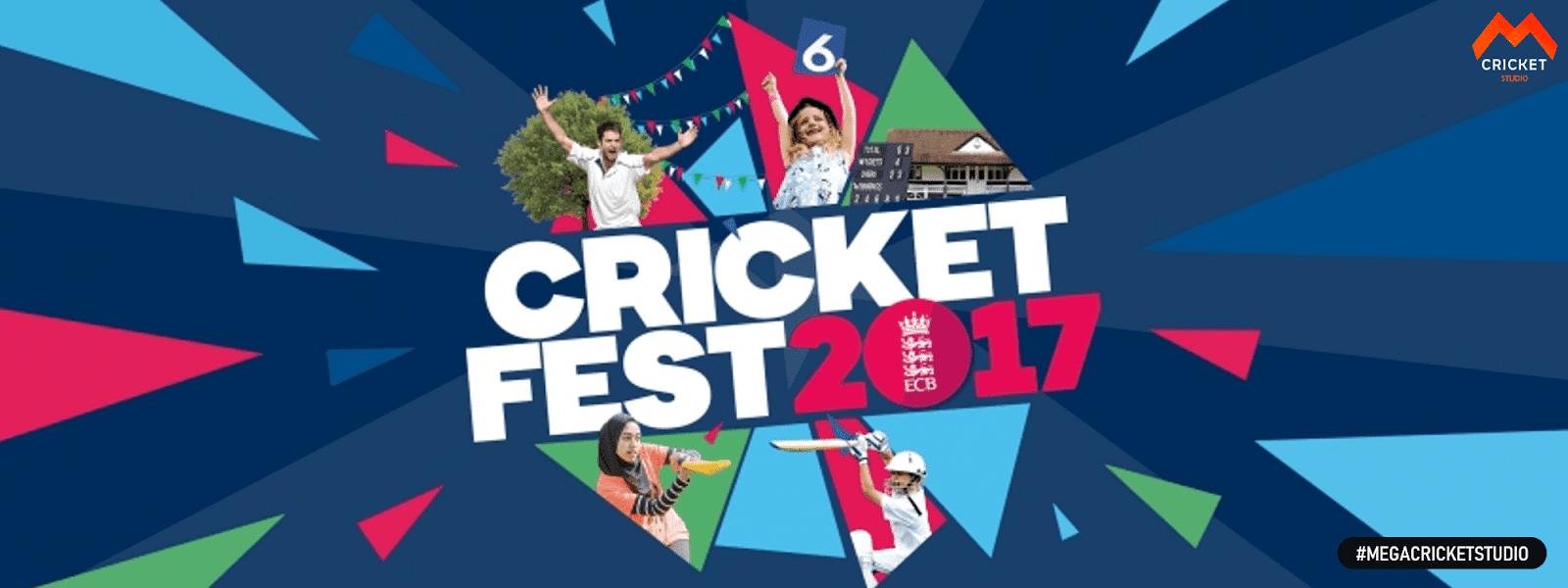 cricket 17 megacricketstudio-min