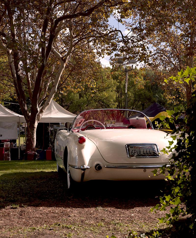 1955 Corvette (2)