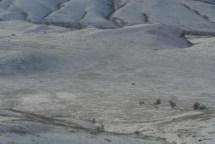 Plain where Nez Perce ambushed US Army