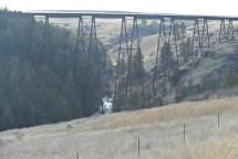 Railroad Trestle across Lawyer Creek