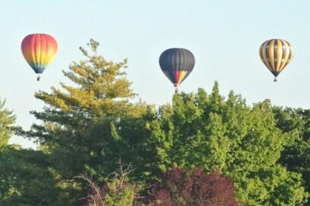 Saturday Balloon Launch 15