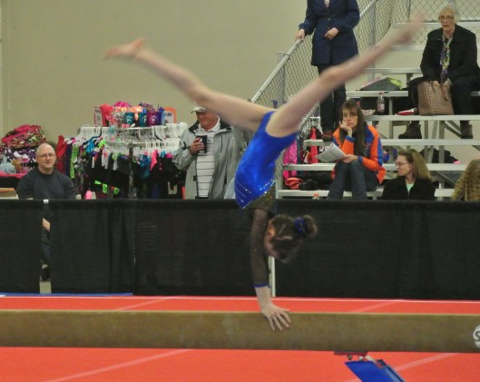 Queen of Hearts Invitational 2014 Beam 1st Back Walkover - Level 7