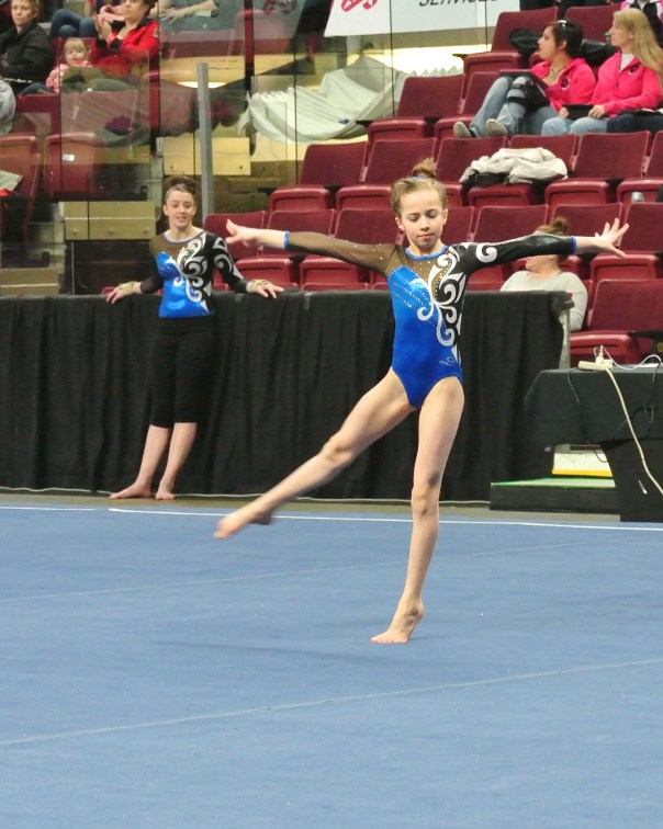 Idaho State Championships 2014 Floor Dance Move - Level 7
