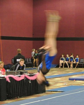 Flips Invitational 2015 Floor Back Layout - Level 7