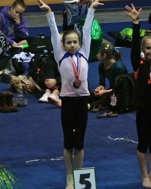 Idaho State Championships 2015 All-Around Awards - Fifth - Level 7