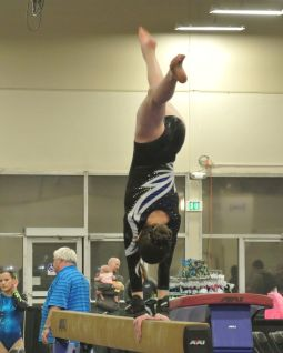 Queen of Hearts Invitational 2016 Beam Back Walkover - Level 8