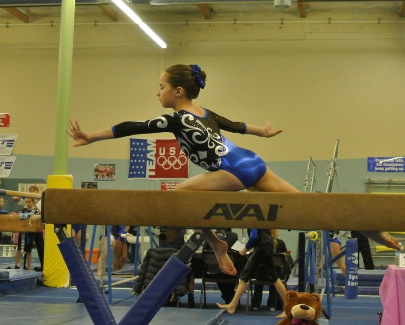 Teddy Bear Classic 2011 Beam Balance Move - Level 5