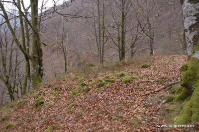 Túmulo profanado de Zubibeltzeko Bizkarra, Luzaide-Valcarlos