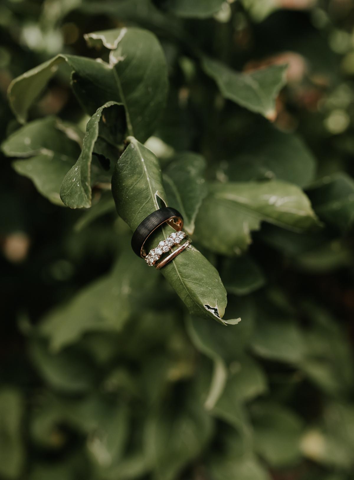 Megan Claire Photography | Arizona Wedding Photographer.  Rustic Glam Backyard Wedding