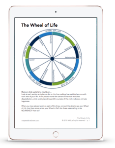 wheel of life preview