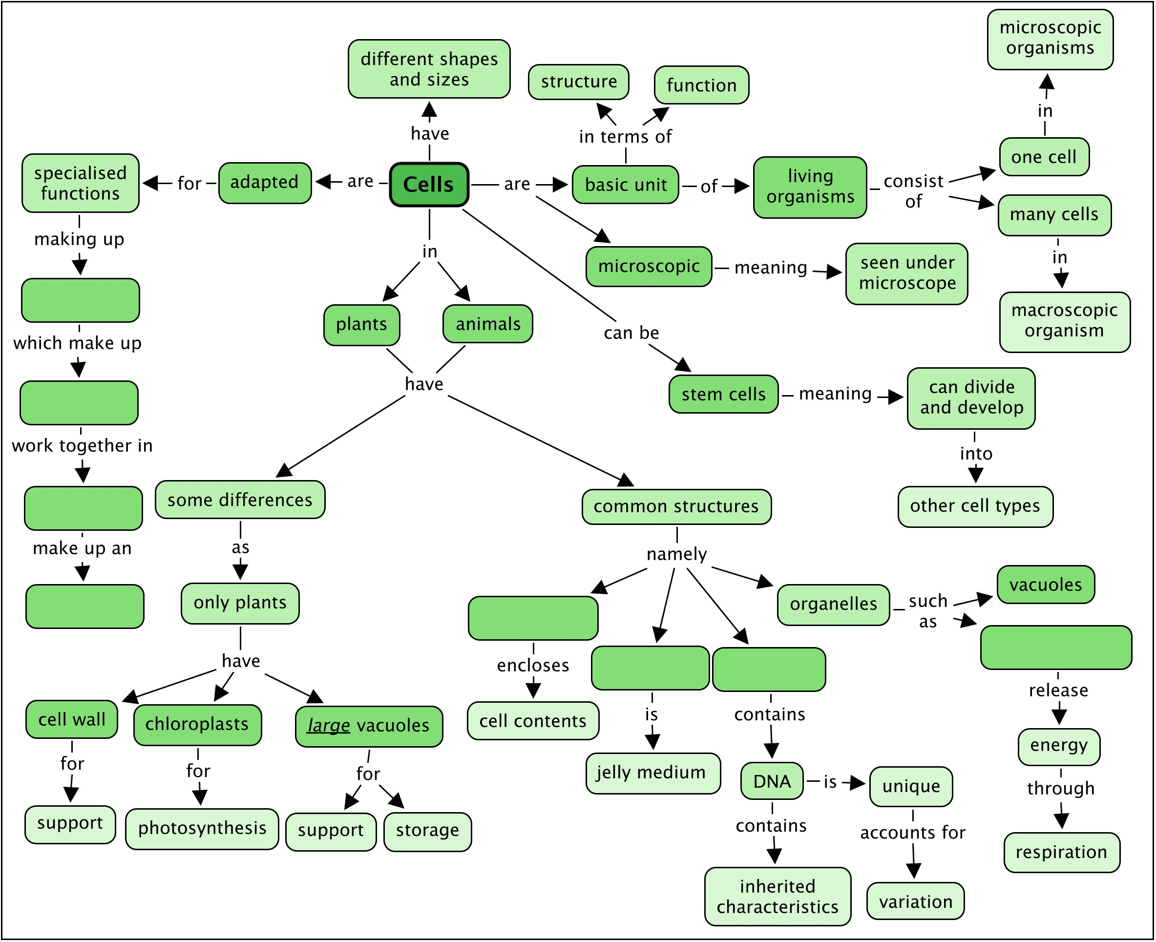 Concept Concept Concept Mapping