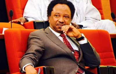I Will Still Contest In 2019 - Senator Shehu Sani