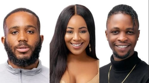 BBNaija 2020: I wouldn't date Laycon even if there was no Kiddwaya – Erica