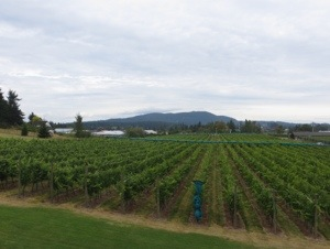 Church and State Winery