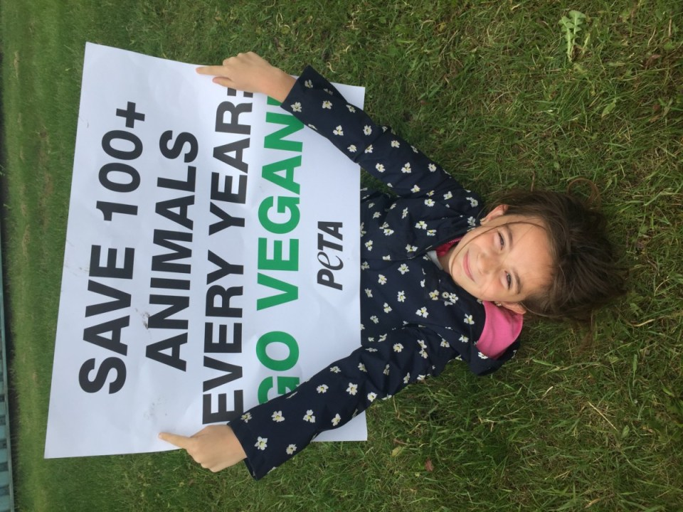 """a seven year old girl laying on the grass upside down holding a sign by Peta that says """" Save 100+ animals every year: Go Vegan"""""""