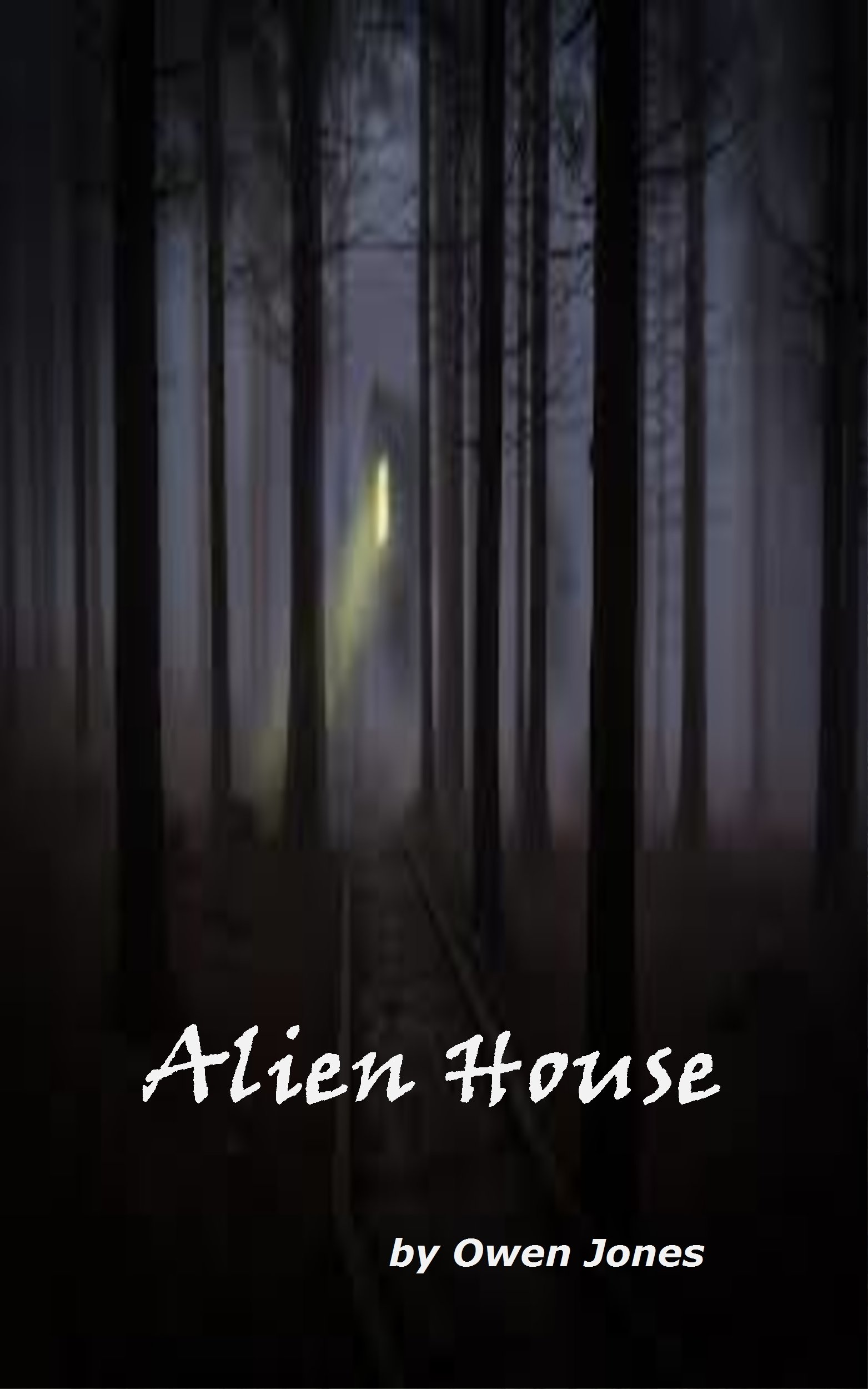 The Alien House
