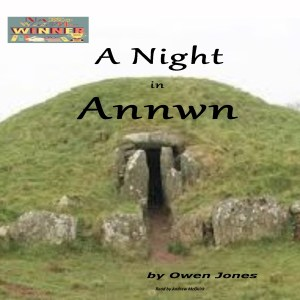 A Night In Annwn Audiobook