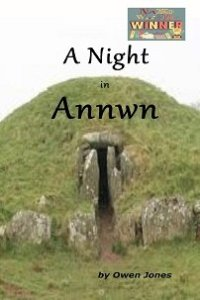 A Night In Annwn - NaNO Winner