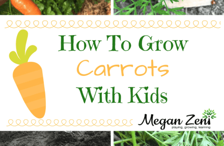 How To Grow Carrots With Kids
