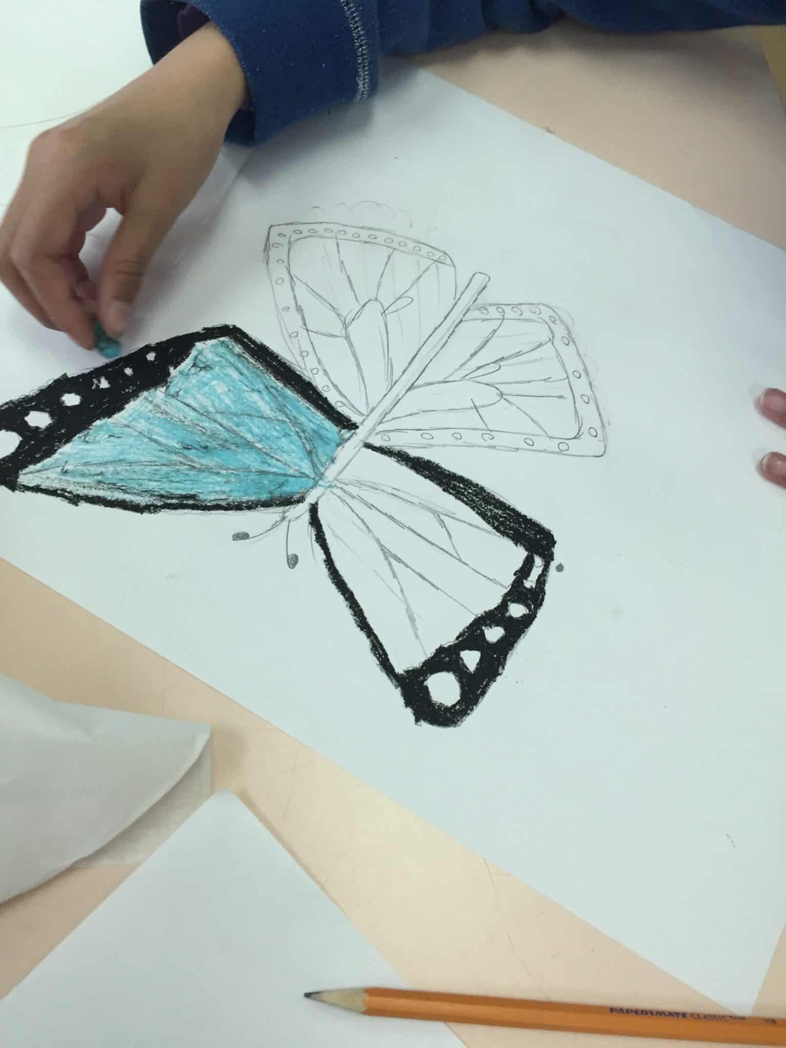 butterfly steam