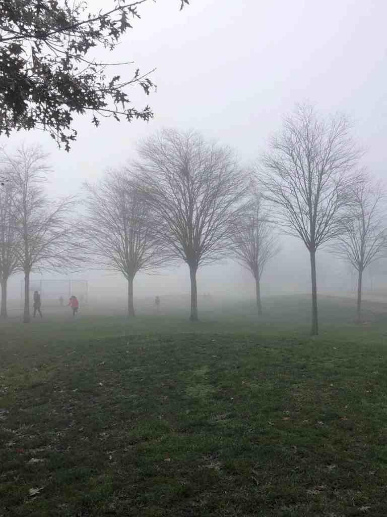risky play in fog