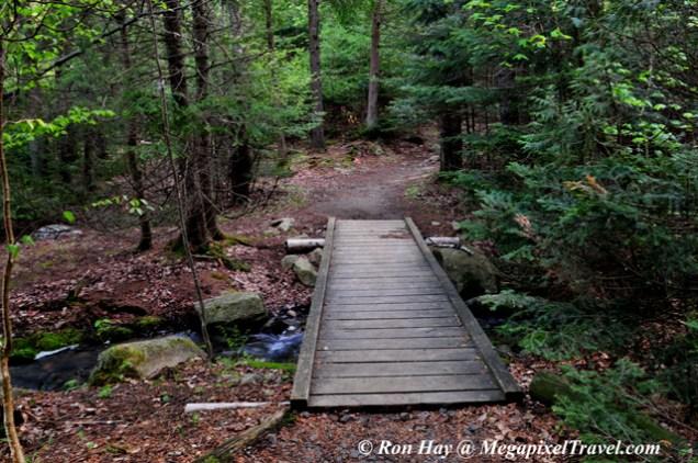 RON_3226-trail