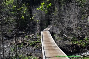RON_3238-Marcy-Dam-trail