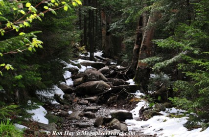 RON_3278-Mt-Marcy-trail