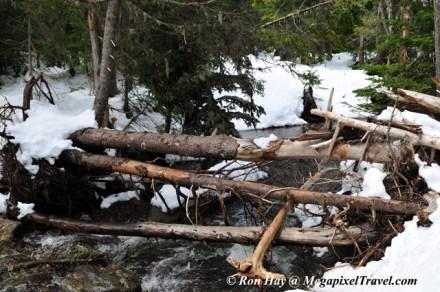 RON_3308-Crossing-the-creek
