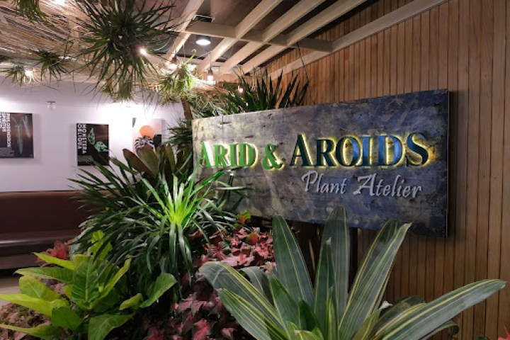 If you're looking for a premium gardening experience, look no further as Arid and Aroids (G/F) is a well-known supplier of rare and exotic plants.