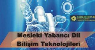 bilisim teknolojileri alani mesleki yabanci dil dersi