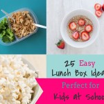 25 Easy Lunch Box Ideas Perfect for Kids at School