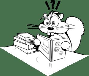 squirrel-304021_1280