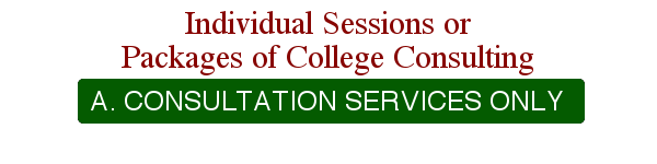 Individual Sessions or Packages of College Consulting - A. Consultation Services Only