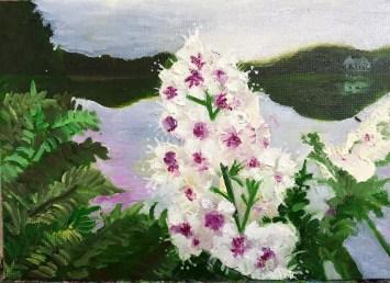 Bridewort medicinal series