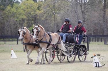 Ray Mansur won the Prelim pony pairs