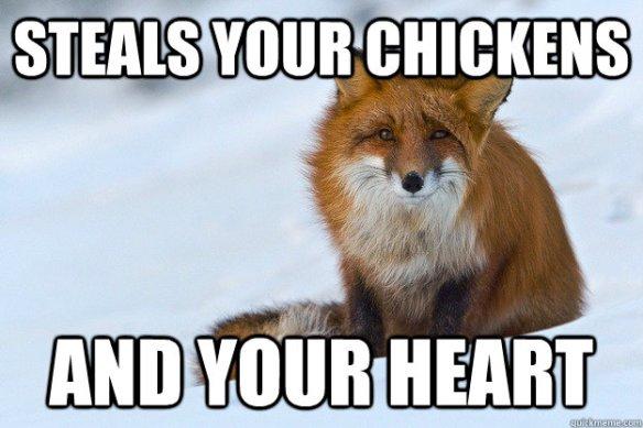 fox-heart