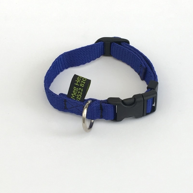 Puppy Collars made for any breeds size puppy