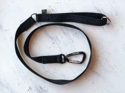Carabiner Dog lead