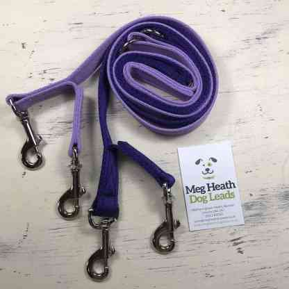 Head Collar Safety Lead